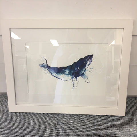 Framed Print Blue Whale