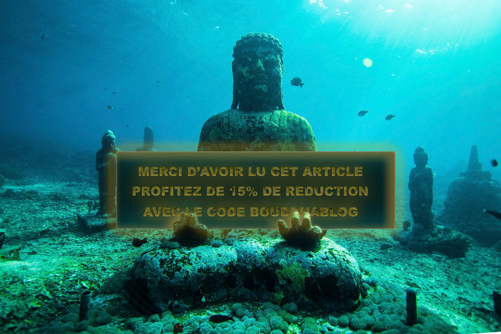 Code promotionnel Univers Bouddha