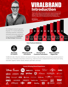 ViralBrand Masters Program