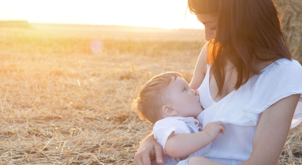 8 Easy Tips For Breastfeeding In Public - Petit Tippi Blog