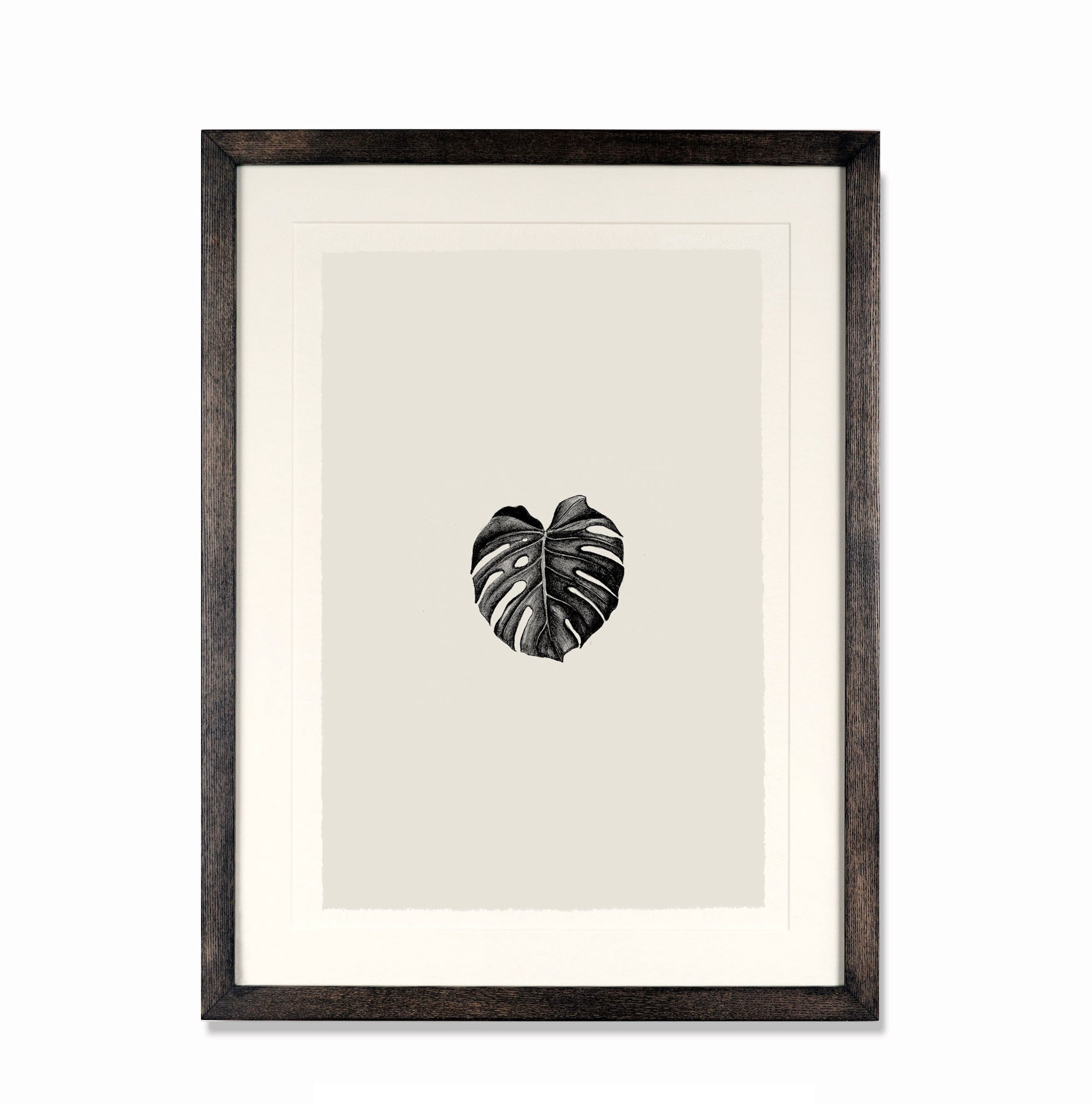 Illustration 001 (Monstera Deliciosa)