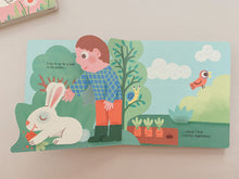 Load image into Gallery viewer, Rabbit (Tales from nature) Board book - Lift the flap