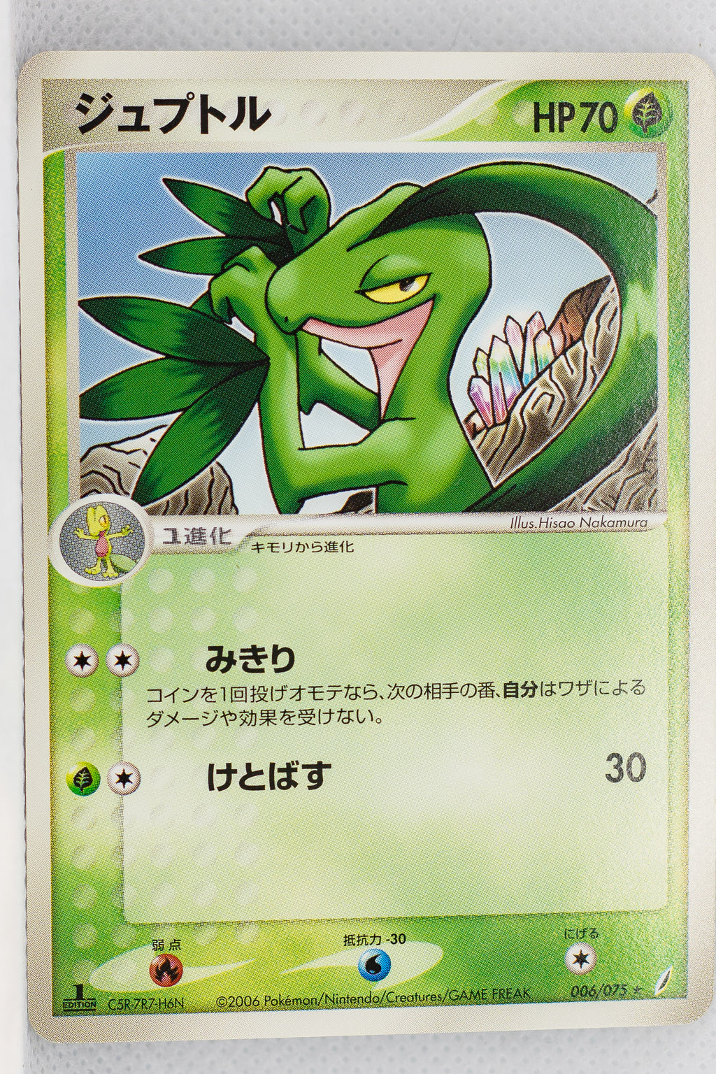Miracle Crystal 006/075 Grovyle Rare 1st Edition