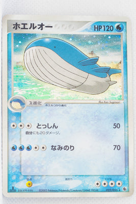 ADV Base 022/055	Wailord Holo 1st Edition