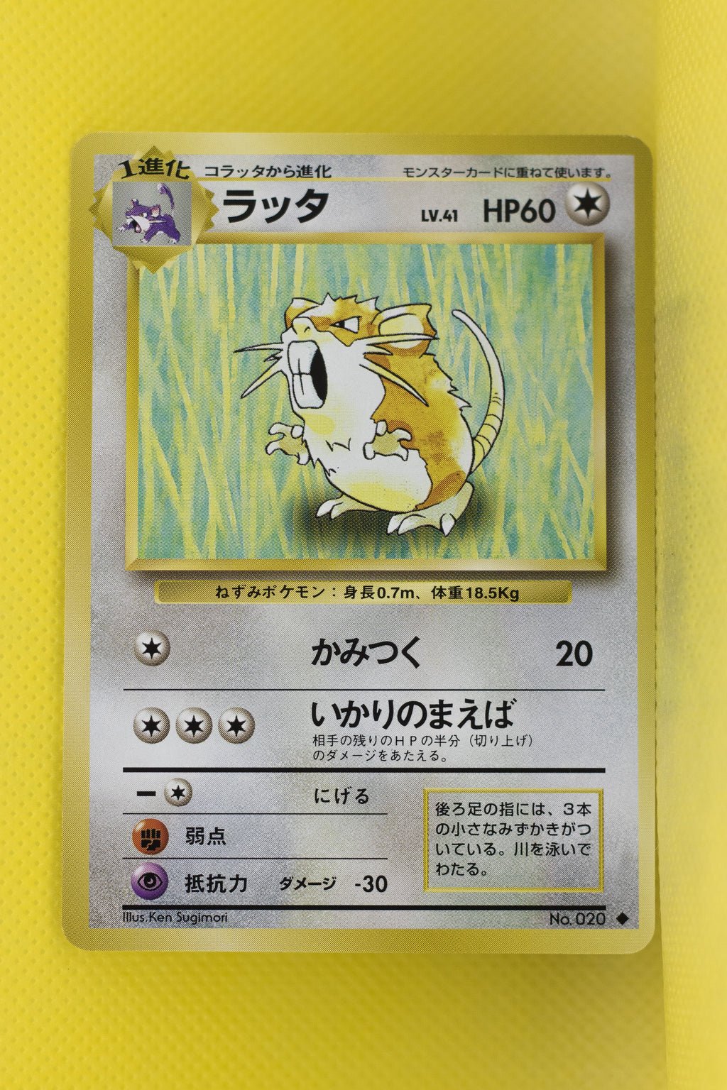 Base Raticate 020 Uncommon