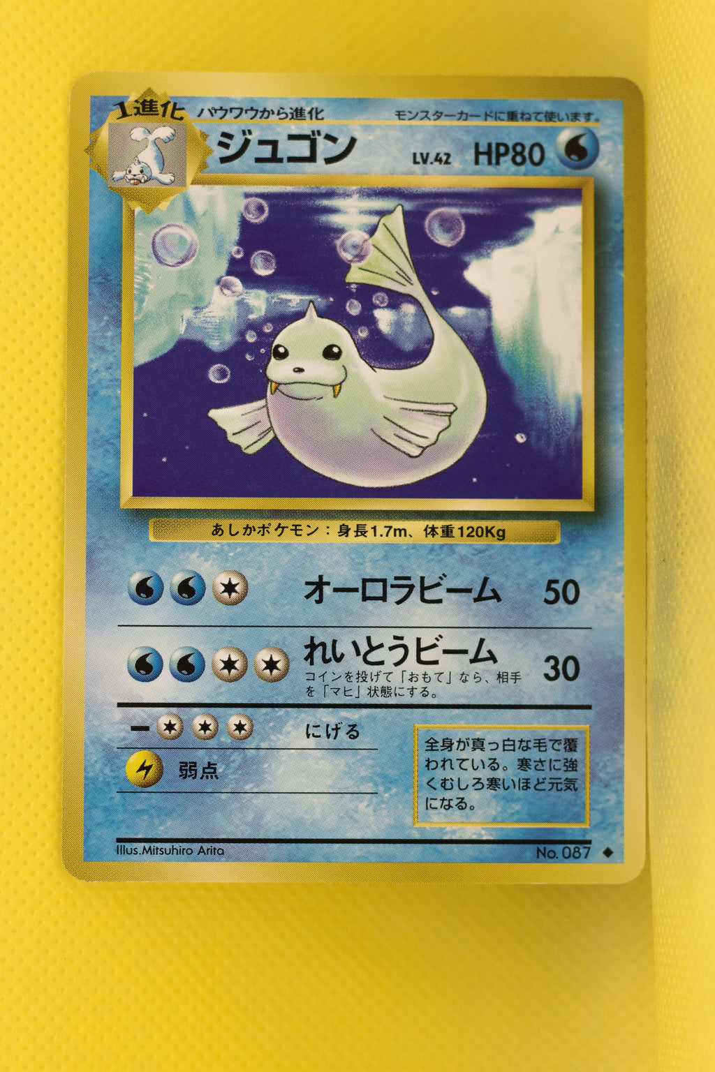 Base Dewgong 087 Uncommon