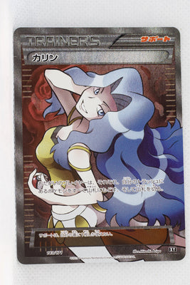 The Best of XY 183/171 Karen Holo