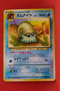 Fossil Omanyte 138 Common