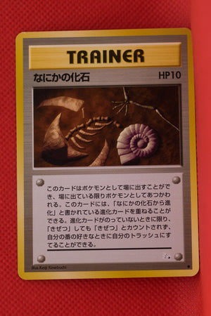 Fossil Trainer Mysterious Fossil Common