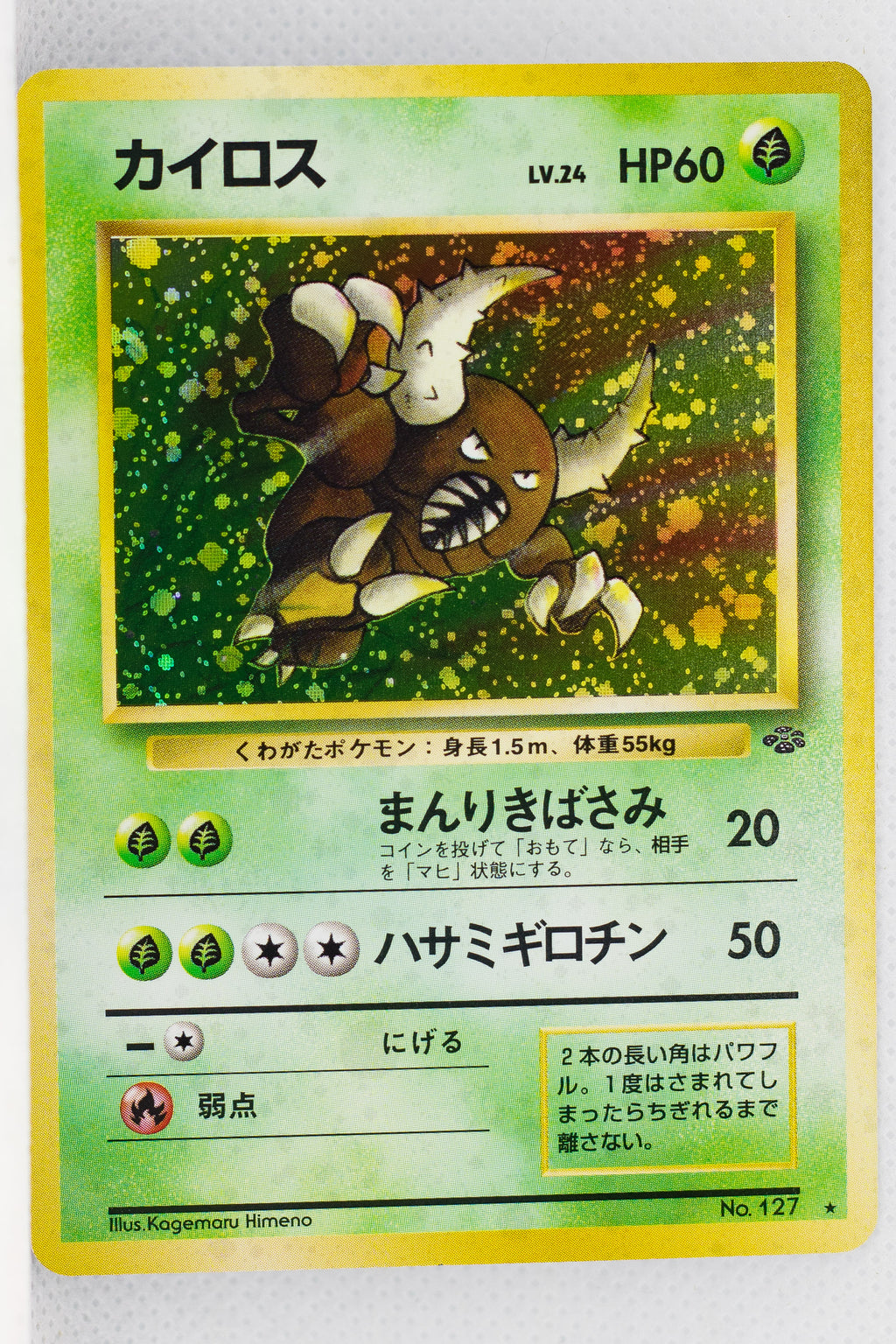 Jungle Pinsir Holo