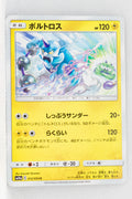 SM10a GG End 012/054	Thundurus