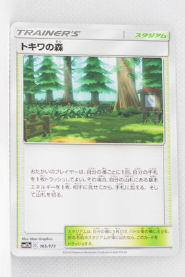 SM12a Tag All Stars 165/173 Viridian Forest