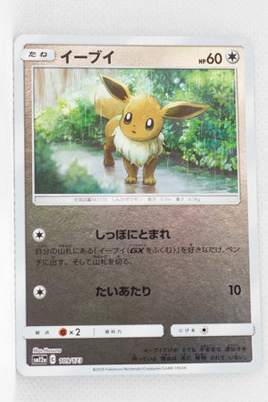 SM12a Tag All Stars 109/173 Eevee Reverse Holo