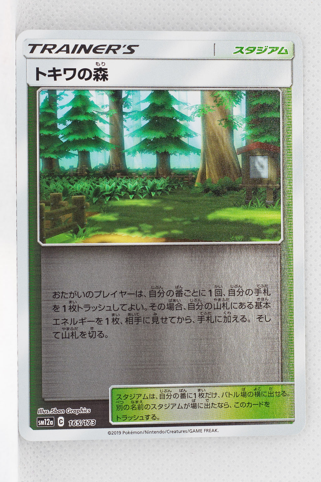 SM12a Tag All Stars 165/173 Viridian Forest Reverse Holo