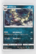 SM1 Collection Sun 035/060 Krokorok