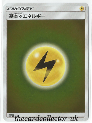 SM2+ Beyond a New Challenge Electric Energy Rev Holo