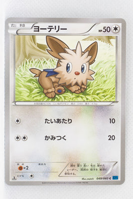XY1 Collection X 049/060 Lillipup 1st Edition