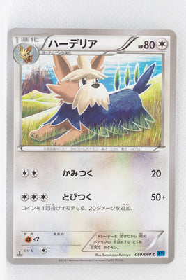 XY1 Collection X 050/060 Herdier 1st Edition