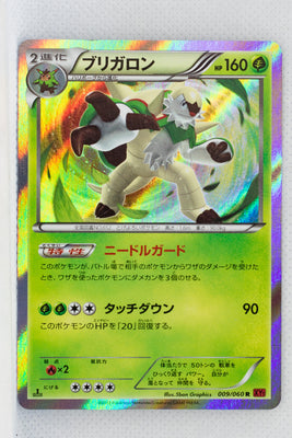 XY1 Collection Y 009/060 Chesnaught 1st Edition Holo