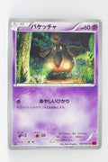 XY1 Collection Y 027/060	Pumpkaboo 1st Edition