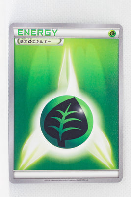 XY1 Collection Y Grass Energy