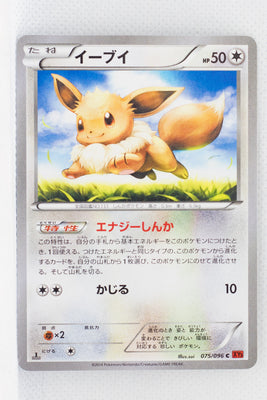 XY3 Rising Fist 075/096	Eevee 1st Edition