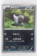 XY4 Phantom Gate 052/088	Poochyena 1st Edition