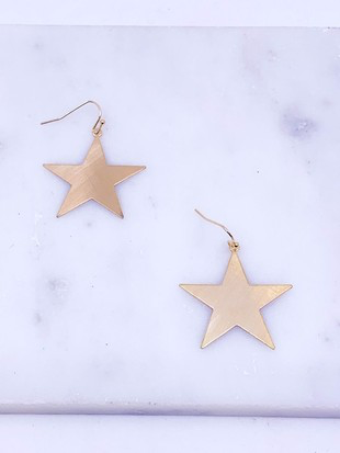Star Satin Finish Earrings