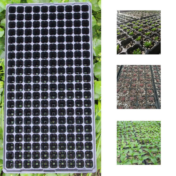 200 Cells Seedling Starter Trays