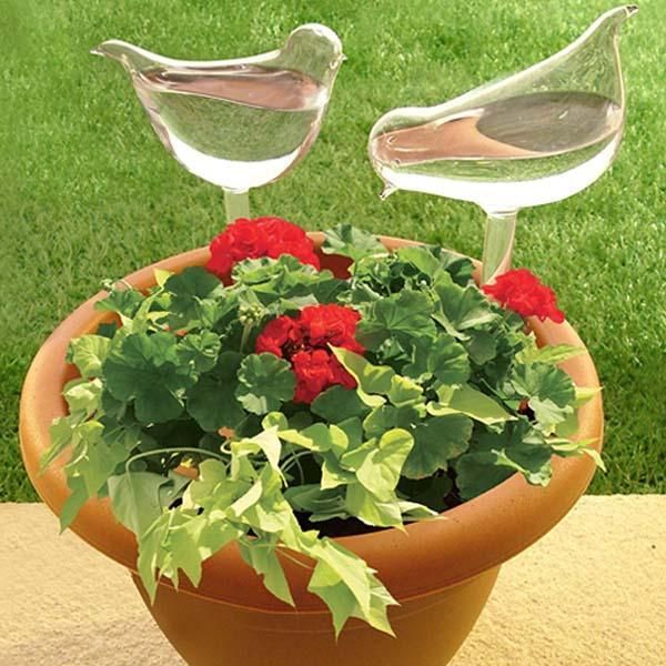 Self-Watering Plant Glass Bulbs Set of 2