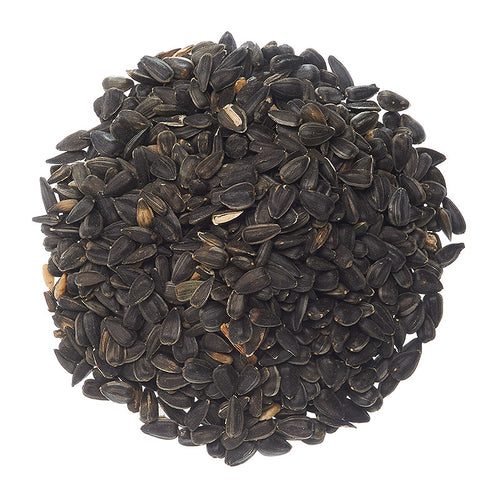 Black Oil Sunflower, 50lb