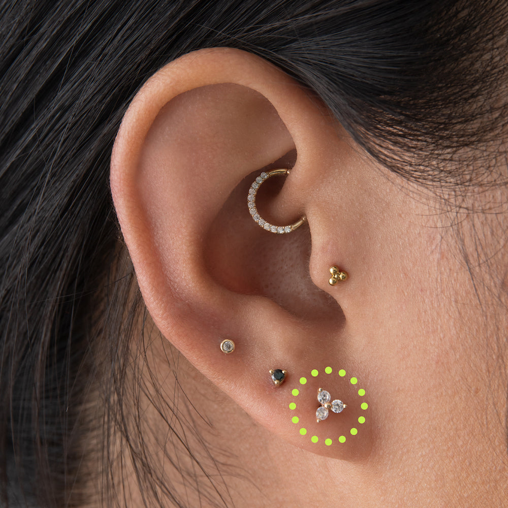 An image of an ear with the first lobe piercing circled.