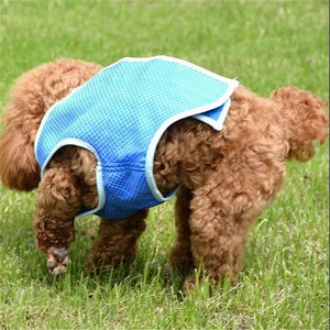 Summer Cooling Dog Vest