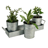 Artland Masonware Picnic Caddy & Planter Set, Galvanized