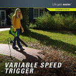 Greenworks 40V Cordless String Trimmer & Blower Combo Pack STBA40B210