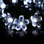 Qedertek Solar String Lights, Fairy Garden Blossom Christmas Lights for Outdoor, Home, Lawn, Patio, Party and Holiday Decorations (1PACK, White)