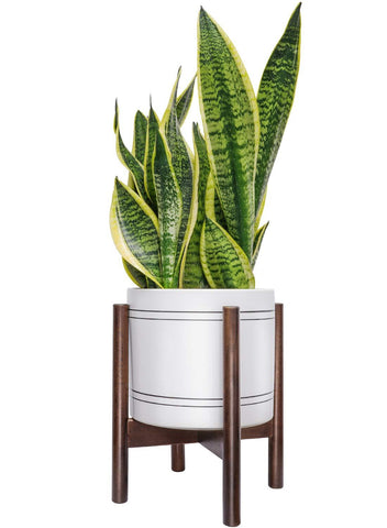 Mid Century Plant Stand - Up to 10'' Flower Pot, Wood Indoor Planter Holder, Modern Home Decor (Planter Not Included)