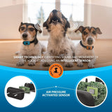 SparklyPets Humane Dog Bark Collar | Anti Barking Training Collar | Vibrating, No Shock Stop Barking for Small Medium Large Dogs | Upgrade 2019 Pet Corrector (2 Pack)