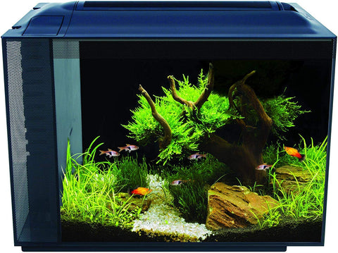 PetEvo  Spec 60L Freshwater 60 Aquarium