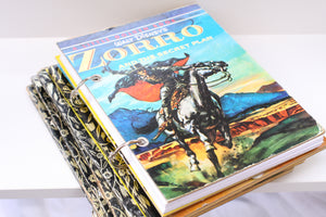 Zorro and the Secret Plan Notebook
