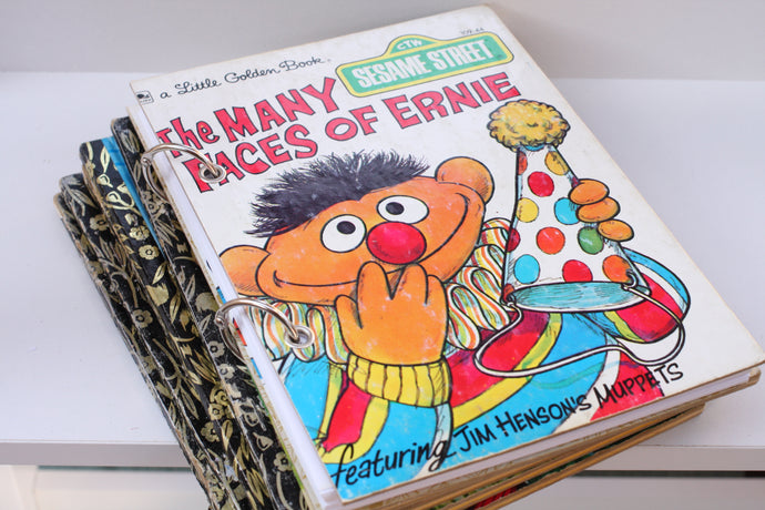 The Many Faces of Ernie Notebook