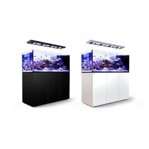Reefer Peninsula P650 Deluxe White