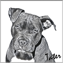 Load image into Gallery viewer, Sketch Pet Art