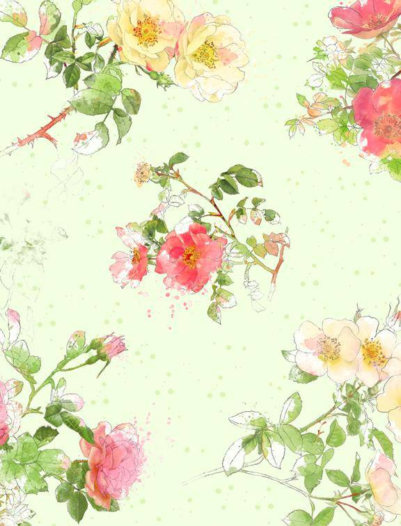 Painting Paris, Green Rose Floral 16504-735  2.5 yd - Fabrics N Quilts