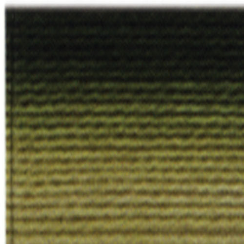 DMC Six Strand Embroidery Floss Variegated Avocado 92 - Fabrics N Quilts