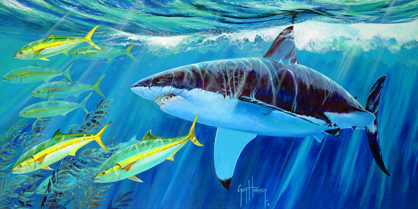 GUY HARVEY OCEAN FOUNDATION RECEIVES $300,000 DONATION TO SUPPORT SHARK RESEARCH