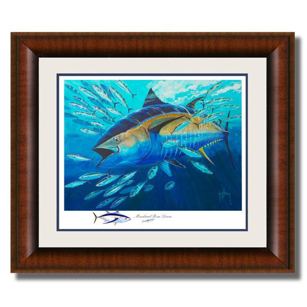 MACKEREL RUNDOWN AP FRAMED 33X40
