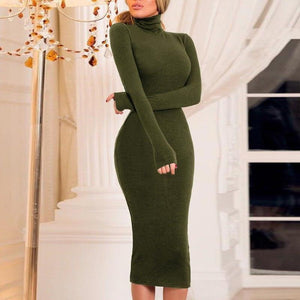 Radiez Elegant High Neck Plain Bodycon Midi Dress