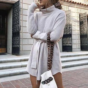 Classy High Neck Long Sleeve Plain Waisted Mini Dress