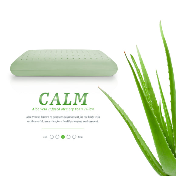 Wellness Collection Aromatherapy Infused Memory Foam Pillows